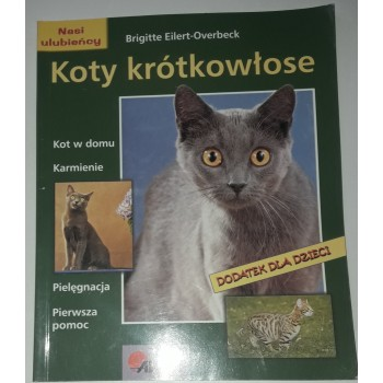 Koty krótkowłose Eilert